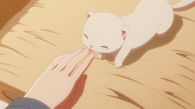 Baby Kumagoro.jpg