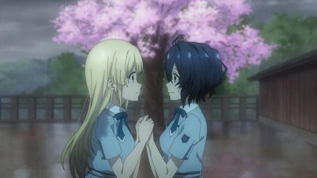 Miu X Sakura + rainy sakura
