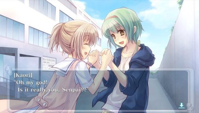 Nurse Love Nagisa and Kaori
