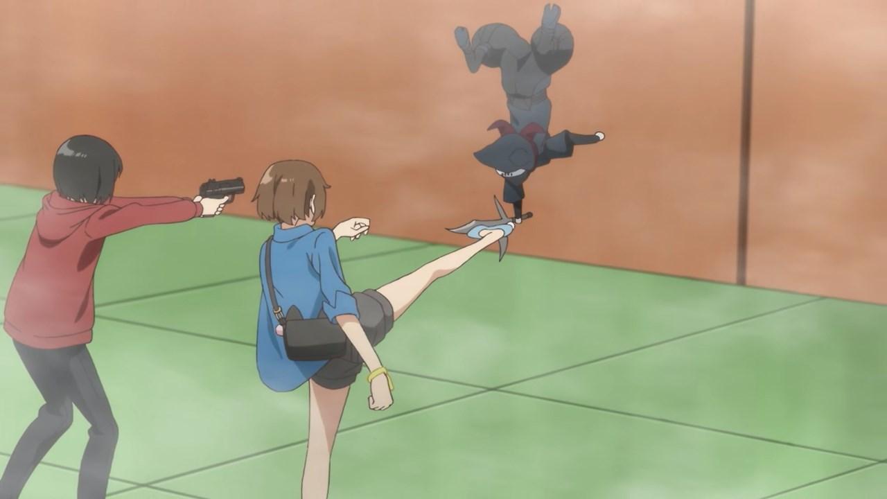 Akari vs Ninja Cat