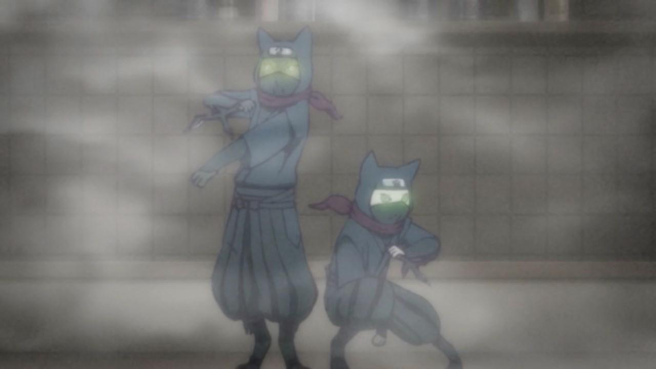 Ninja Cats appear